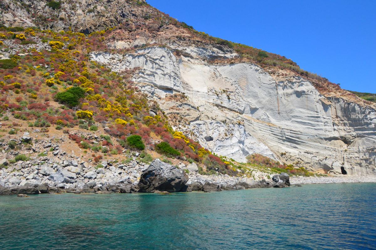 scogliera-fiorita-palmarola-noleggio-gommone-circeo-ponza-isole-pontine